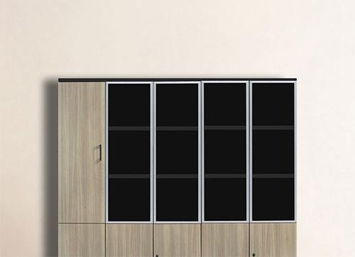 玻璃门文件柜